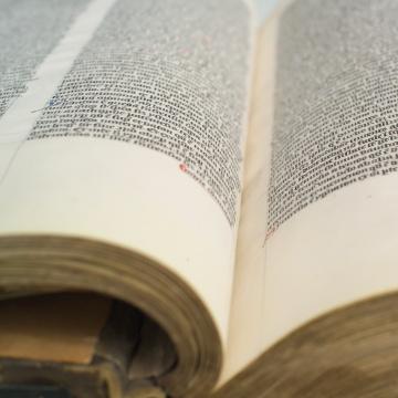 grootste boek_006.jpg